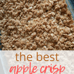 homemade apple crisp in pan
